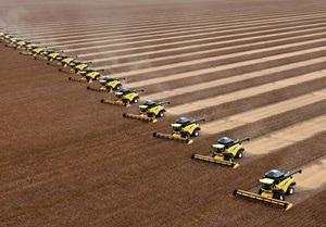 Крупный украинский агрохолдинг потерял почти половину прибыли