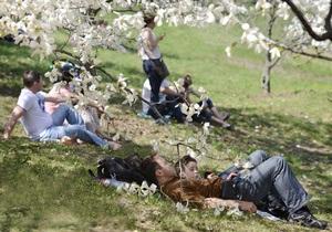 Де провести травневі свята - На травневі свята у деяких регіонах можуть заборонити смажити шашлики в лісі