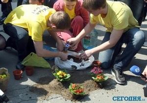 Київ - дороги - ями - акція - активісти - квіти