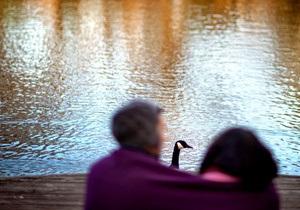 Настрій - люди - Дослідження: Ступінь віддаленості від дому впливає на настрій