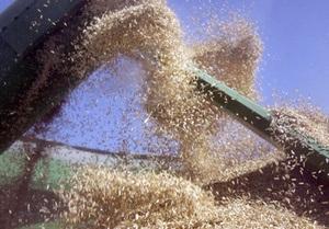 В Одеському порту відкрили першу чергу зернового терміналу