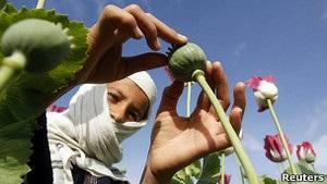 Афганістан із експортера героїну став його головним споживачем