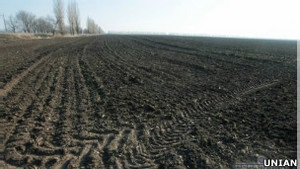 ВВС Україна: Врожай-2013. Прогнози стають скромнішими