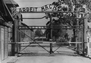 Слідчі вийшли на 50 колишніх наглядачів Освенцима
