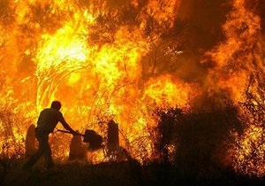 На пожежі в Житомирській області загинуло двоє чоловіків