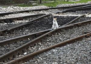 Украина просит у ВБ полмиллиарда долларов на модернизацию железных дорог