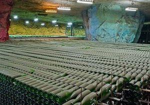 Ахметов вышел из бизнеса по производству игристых вин