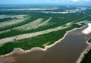 Нефтяные гиганты планируют добывать газ в амазонских джунглях