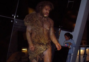 Неандертальці лікувалися ромашкою і деревієм