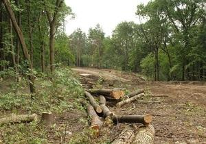 Громадськість Харкова б є на сполох через вирубку дерев у парку Горького