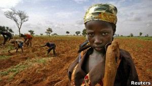 У Нігері загострюється продовольча криза – доброчинна організація