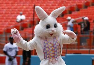У США поліція затримала пасхального зайця, звинувативши його в крадіжці DVD