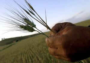 Вчені знайшли альтернативу пестицидам при зберіганні зерна