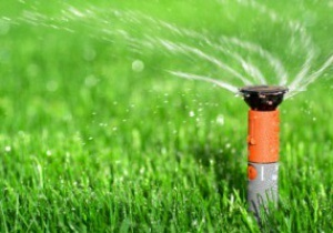 UEFA утвердил порядок полива газонов на Евро-2012