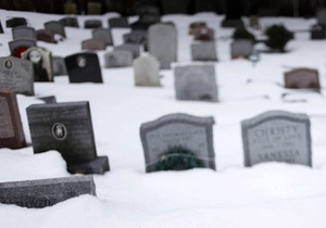 У Франції з могили пуделя викрали нашийник з діамантами