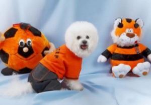 Шахтер презентовал линию одежды для домашних животных