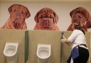 Фотогалерея: Евроклозет. В Варшаве к Евро-2012 создали оригинальные туалеты