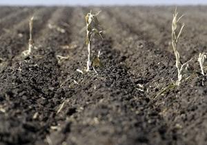 Группы Ахметова и Новинского создают сельскохозяйственный холдинг на базе активов ММК