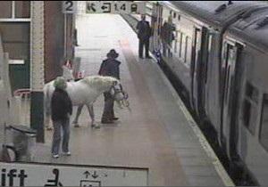 Британцю не дозволили поїхати на поїзді з конем