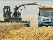 Ціни на харчі і як може допомогти Україна