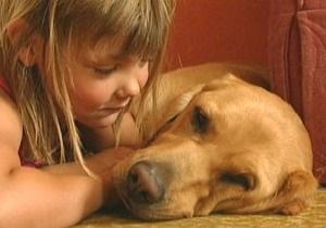 Собаки імітують рухи хазяїв, кажуть вчені