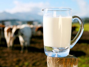 Голландцы могут приобрести украинский молочный холдинг