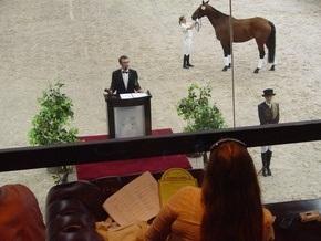 Корреспондент розповів про перший в Україні аукціон спортивних порід коней