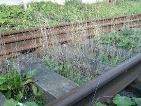Южная железная дорога сокращает рабочую неделю