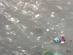 Індійська спортсменка померла під час марафонського запливу