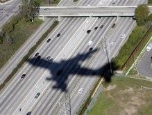 К концу года авиакомпании ждут многомиллиардные убытки