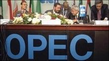 ОПЕК підвищила прогноз споживання нафти