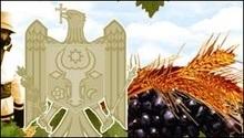 У Молдові розвивають пивну промисловість
