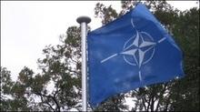 Польські експерти: Референдум про приєднання до НАТО буде провалом євроатлантичних устремлінь України
