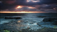 У Північне море вилилося більше 24 тисяч барелів нафти