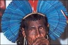 Співробітника місії ООН викрадено індійцями в Бразилії
