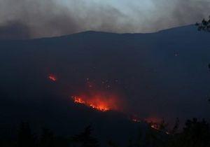 Лесной пожар близ Ялты тушат почти 500 человек