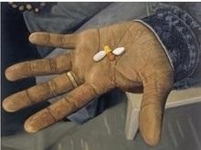 Дэмиен Херст пустит с молотка таблетки от СПИДа за $7 млн
