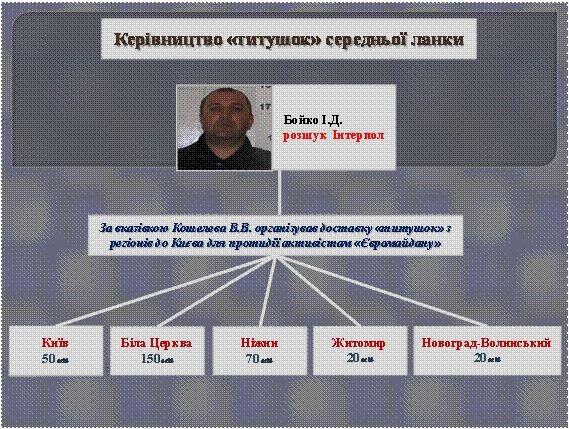 "МВД раскрыло схему доставки ""титушек"" на Майдан"