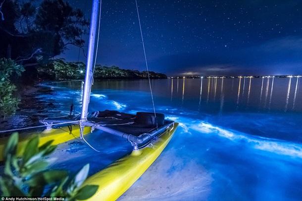 Редкое свечение побережья в Австралии удалось запечатлеть