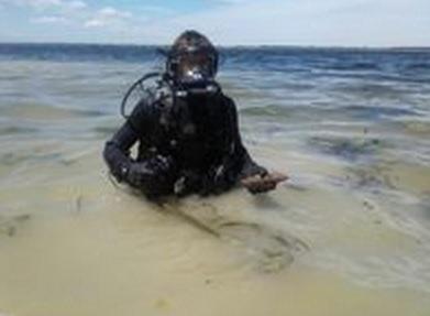 В Киевской области на пляже нашли снаряды времен Второй мировой