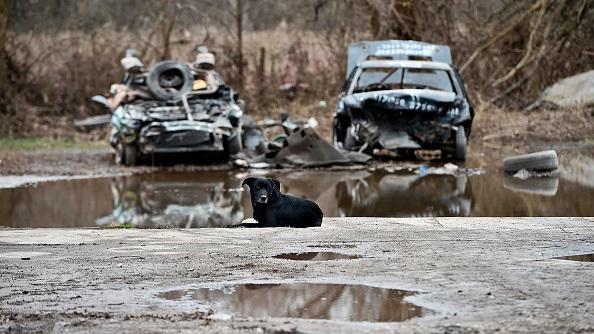 Наводнение в США: сотни американцев покинули дома