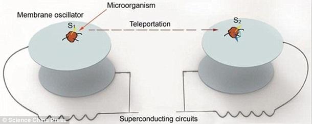 Вчені довели можливість телепортації
