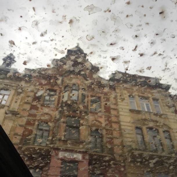 Оранжевый дождь прошел на территории Львовской области