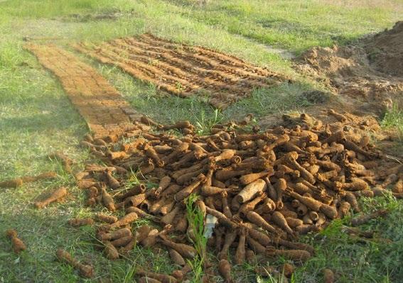 Арсенал боеприпасов времен Второй мировой нашли в парке в Сумской области