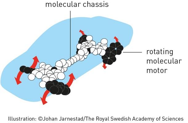 Молекулярний мотор за створення якого вручена Нобелівська премія 2016 з хімії