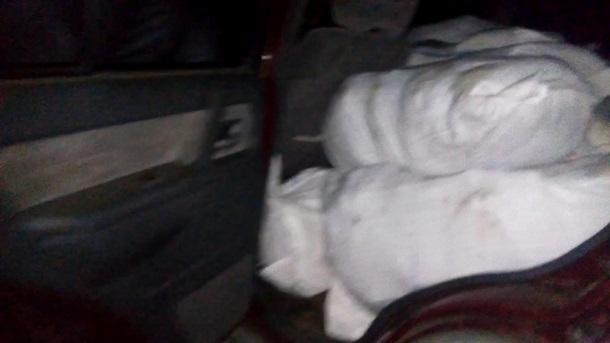 НаВолыни таможенники сострельбой задержали «колонну» контрабандистов смясом