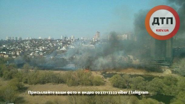 НаСовских прудах из-за возгорания сухостоя произошел сверепый пожар