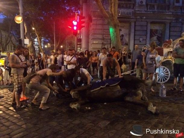 Вцентре Одессы лошадь упала вобморок— Аномальная жара