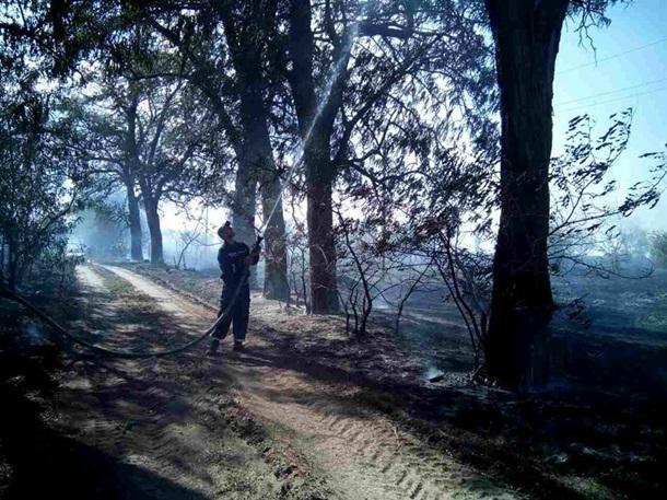 В двух областях Украины горят леса