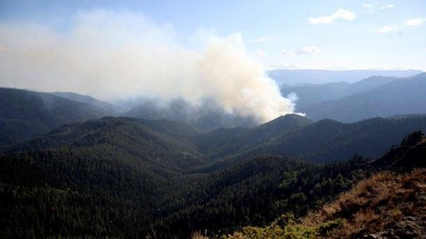 Порошенко відправив доГрузії літак для гасіння лісових пожеж